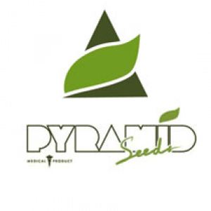 Pyramid_Seeds_logo