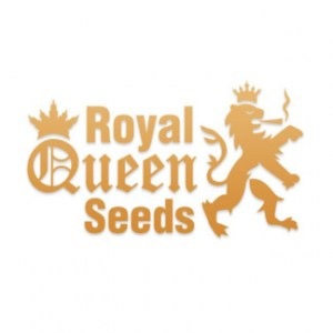 Royal-Queen-Seeds-324x324