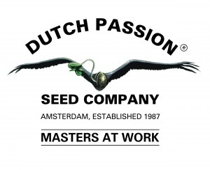 _vyr_3575_dutch-passion