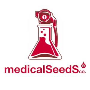 medical-seeds-hanfsamen-medicalseeds-cannabis-seed5