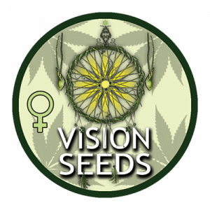 vision-seeds-growshop-growmart